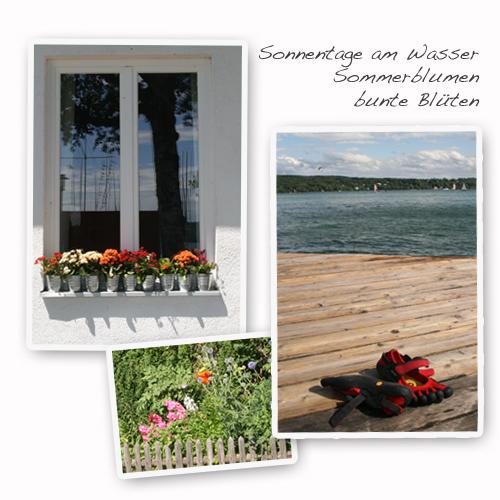 Sonnentage-Wasser-bunte-Blumen