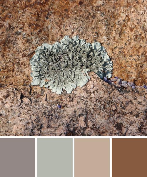 farbimpressionen-Naturtoene-Erde-Beige