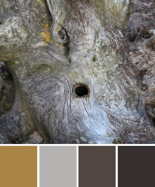 farbinspirationen-Holz-Farben