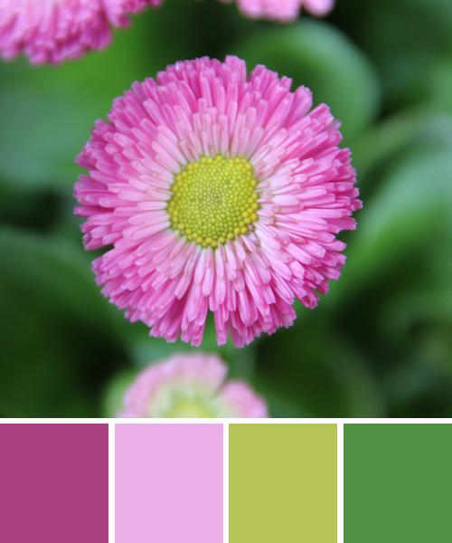 farbinspirationen-Fruehling-Gruen-rosa