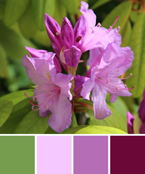 farbinspiration lila violett mit gr n. Black Bedroom Furniture Sets. Home Design Ideas
