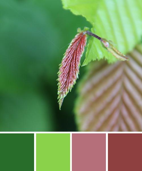 farbinspirationen-fruehlingsgruen-fruehlingsrot
