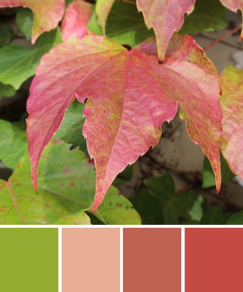 farbinspirationen-natur-herbst-rot