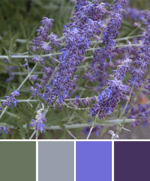 farbinspirationen-lavendel-gruen