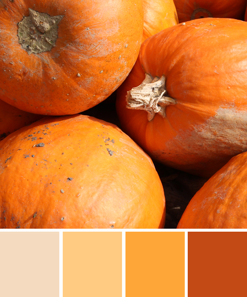 farbinspirationen-natur-herbstfarben-kuerbis-orange