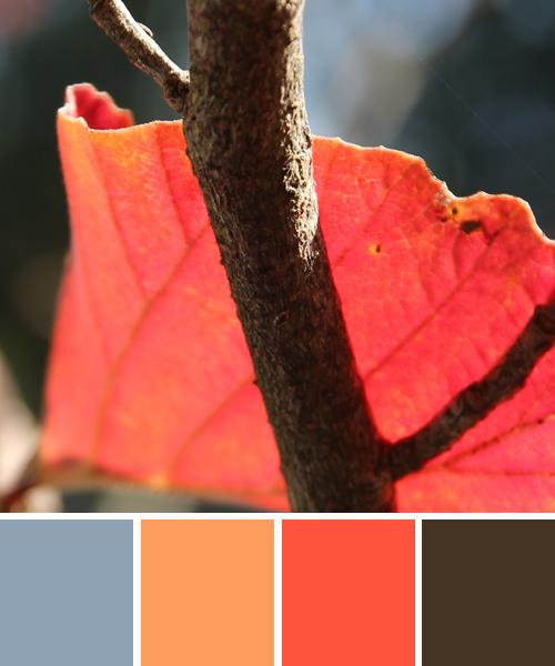 Farbinspirationen Der Natur: Herbstfarben