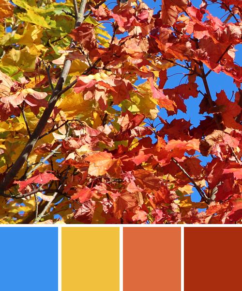 farbinspirationen-natur-herbstfarben-rot-blau