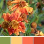 farbinspirationen-natur-herbstfarben-rot-gold