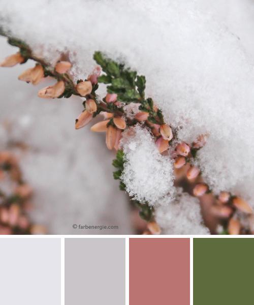 farbinspirationen-natur-Schnee-erika