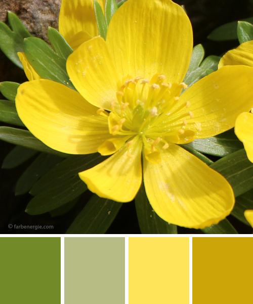 farbinspirationen-Fruehling-gelb-gruen