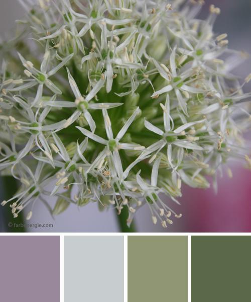 Farbinspirationen flieder grau mit gr n for Flieder grau wandfarbe