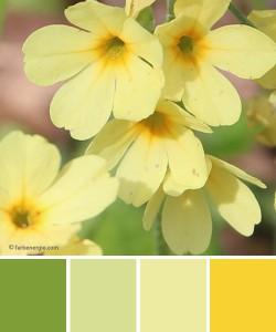 farbinspirationen-Frühlingsgruen-Zitronengelb-natur-