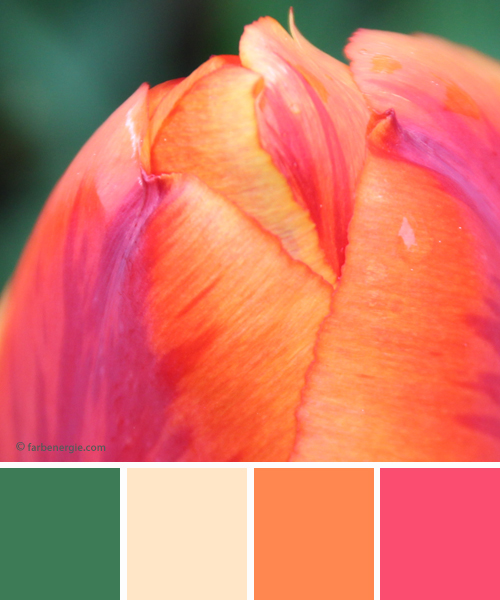 farbinspirationen-Fruehlingsgruen-Orange-Pink-