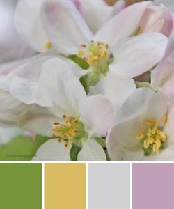 farbinspirationen-fruehling-Apfelbluete-lavendel-fruehlingsgruen-senfgelb