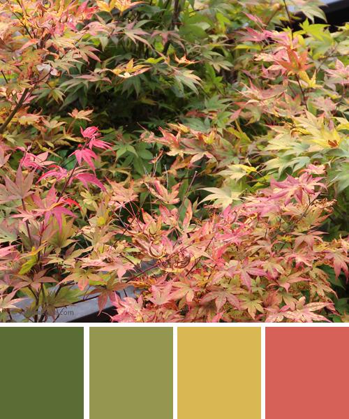 farbinspirationen-Spaetsommer-gruen-gelb-rose