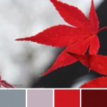 farbinspirationen-Herbst-Rot-Grau-