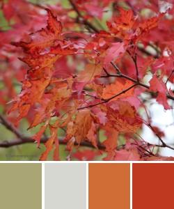 farbinspirationen-Herbstfarben-Orange-rot
