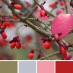 farbinspirationen-Herbstfarben-gruen-rosa