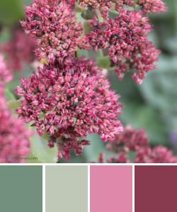 farbinspirationen-Herbstfarben-gruen-rose