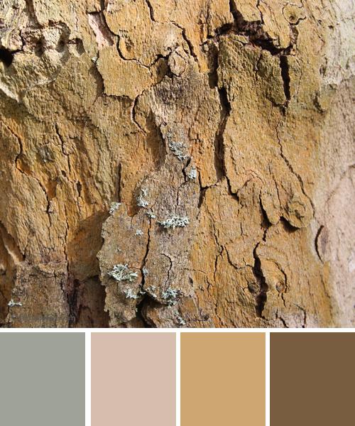 farbinspirationen-naturtoene-beige-braun-sand