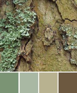 farbinspirationen-winter-gruen-braun