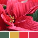 farbinspirationen--rot-gruen-weihnachten