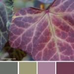 farbinspirationen-naturtoene-Efeu-Gruen-violett
