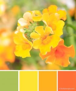 farbinspirationen-gelb-fruehling-Osterfarben