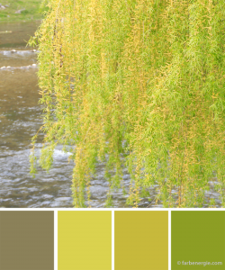 farbinspirationen-gelbgruen-fruehling-kaki