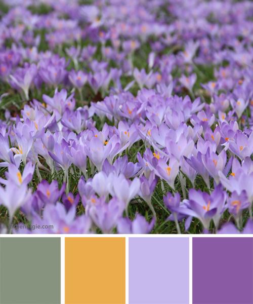 farbinspirationen-gruen-violett-fruehjahr