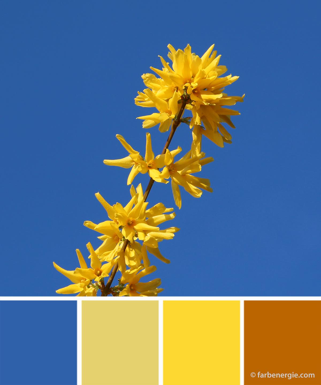farbinspirationen-gelb-Blau-Fruehjahr