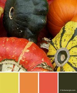 farbinspirationen-herbst-kuerbis-orange