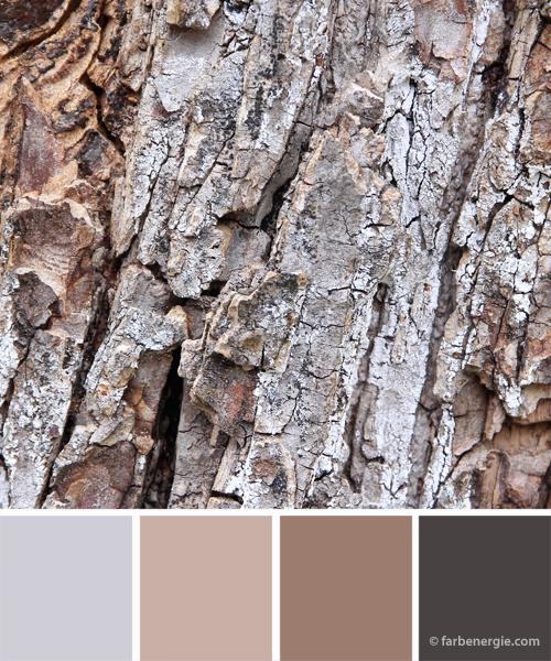 farbinspirationen-baumrinde-grau-beige