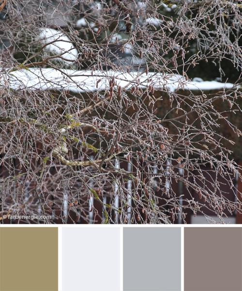 farbinspirationen-Winter-Baum-weiss