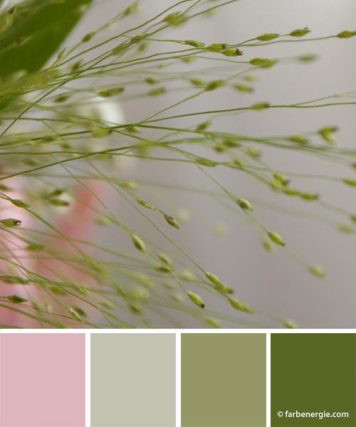 farbinspirationen-neujahr-2017-gruen-zartrosa