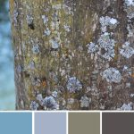farbinspirationen-Winter-flechte-braun-blau-grau