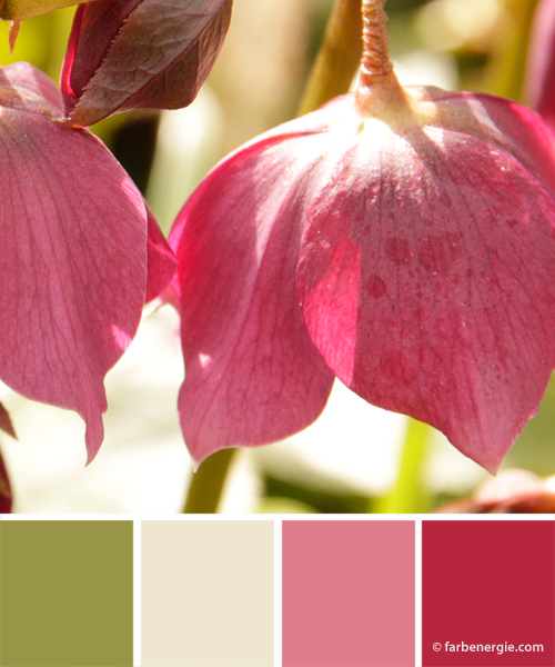 farbinspirationen-rose-fruehlingsgruen-pink