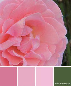 farbinspirationen-gruen-pink-rosa-rose