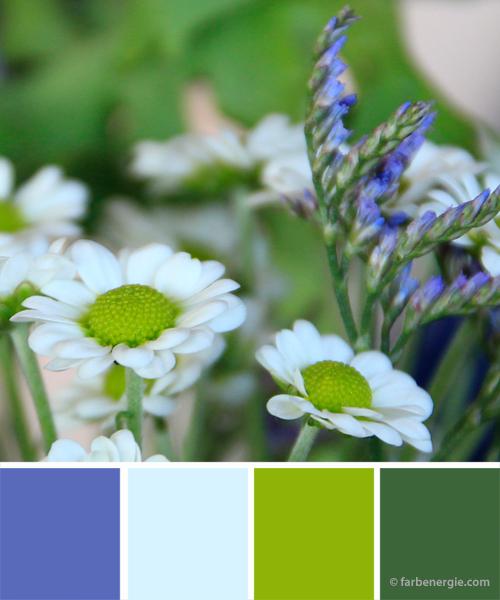 farbinspirationen-Limegreen-koenigsblau