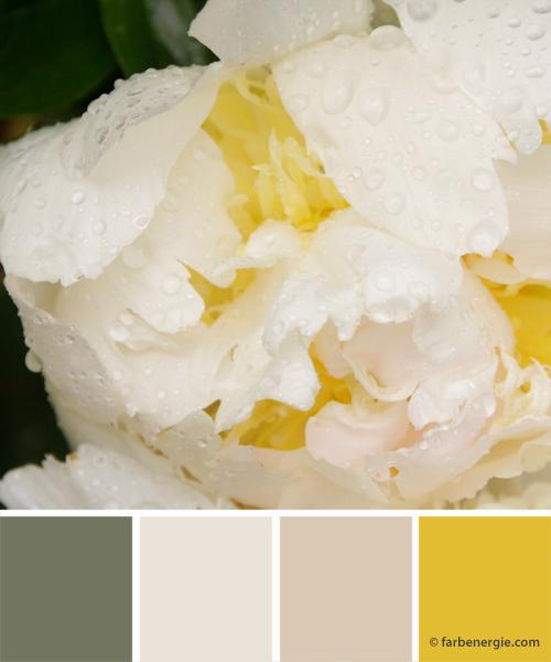 farbinspirationen-buttergelb-weiss-matschgruen