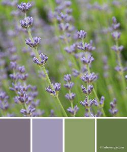 farbinspirationen-sommer-lavendel-gruen