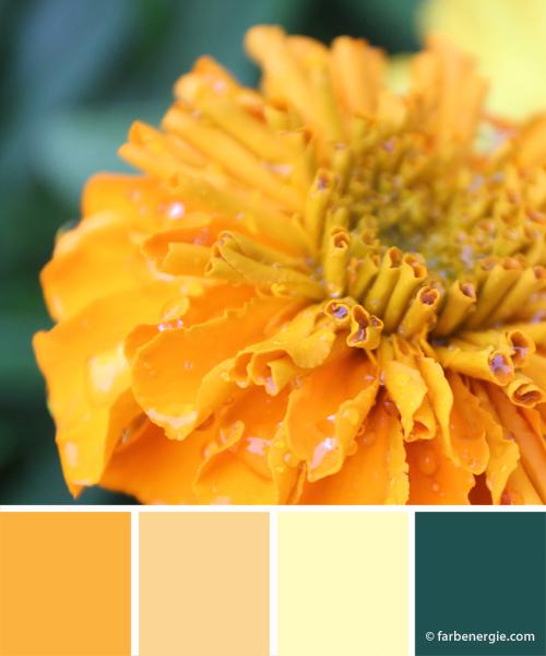farbinspirationen-sonnengelb-hellgelb