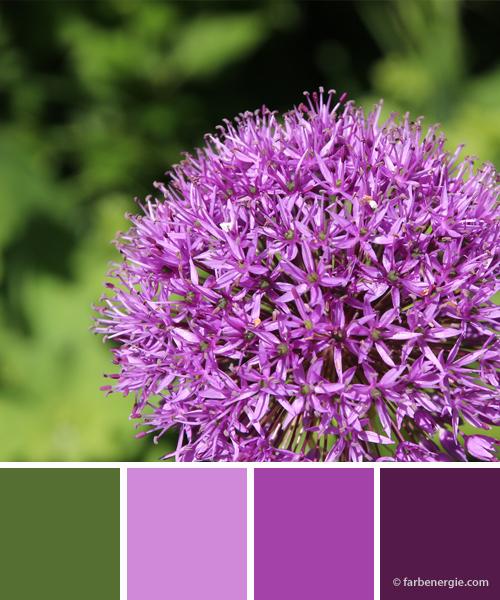 farbinspirationen-violett-flieder-piniengruen