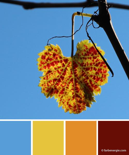 farbinspirationen-herbst-weinlaub