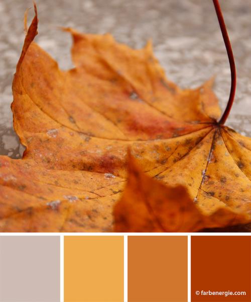 farbinspirationen-herbstfarben-ahornblatt-ockergelb-rostrot