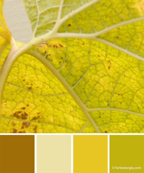 farbinspirationen-herbstfarben-braun-zartgruen