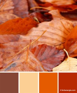 farbinspirationen-herbstfarben-rost-laub-braun-vanillegelb