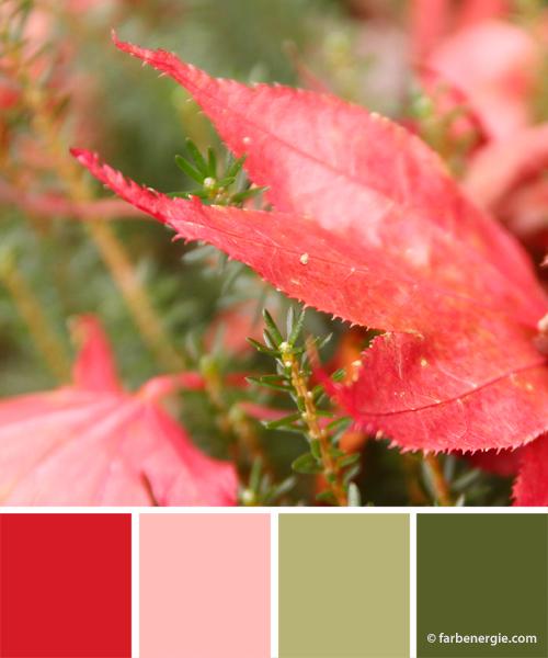 farbinspirationen-weihnachtsfarben-rot-gruen