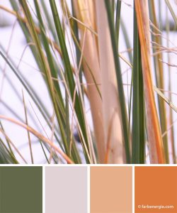 farbinspirationen-gras-winter-gruen