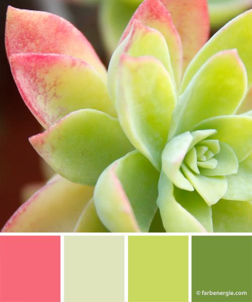 farbinspirationen-frühjahr-gruen-rosa